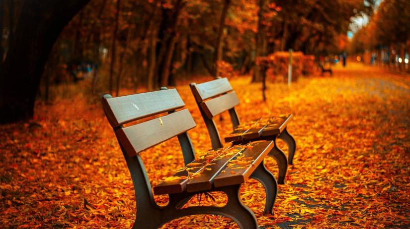 Jesenné upratovanie 19.-25.10.2020