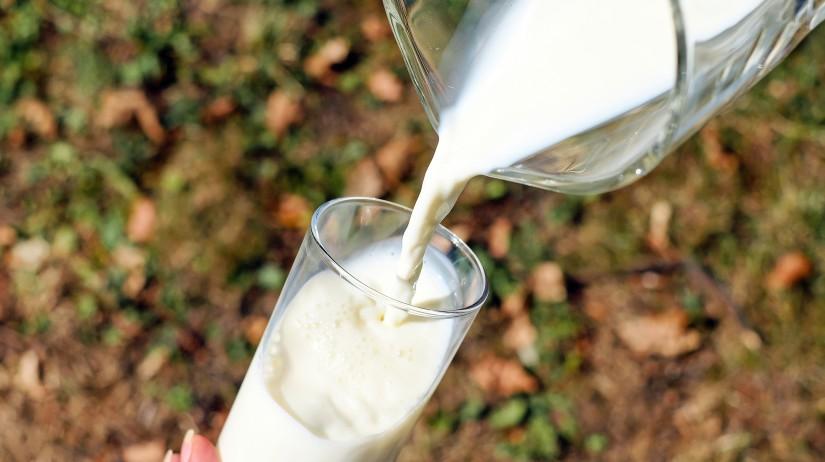 Predaj surového kravského mlieka